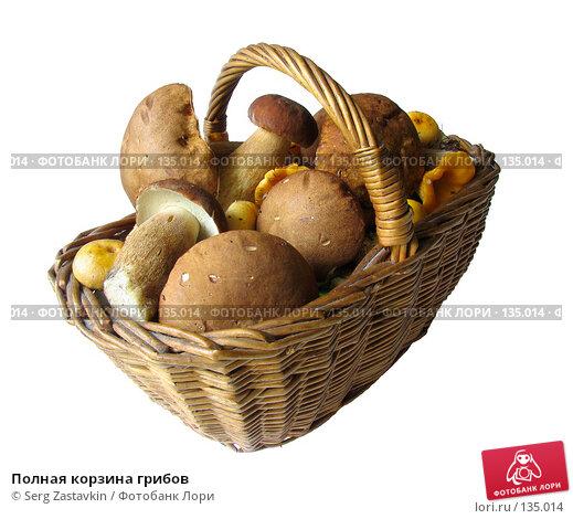 Полная корзина грибов, фото № 135014, снято 30 июля 2005 г. (c) Serg Zastavkin / Фотобанк Лори