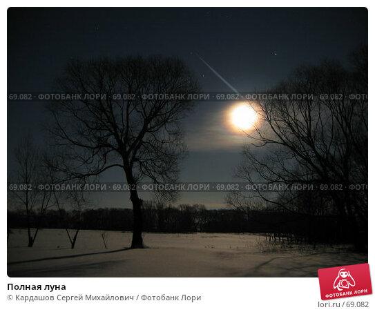 Полная луна, фото № 69082, снято 3 февраля 2007 г. (c) Кардашов Сергей Михайлович / Фотобанк Лори