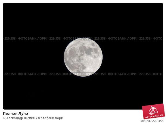 Купить «Полная Луна», эксклюзивное фото № 229358, снято 22 марта 2008 г. (c) Александр Щепин / Фотобанк Лори