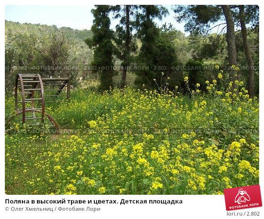 Поляна в высокий траве и цветах. Детская площадка, фото № 2802, снято 11 марта 2006 г. (c) Олег Хмельниц / Фотобанк Лори
