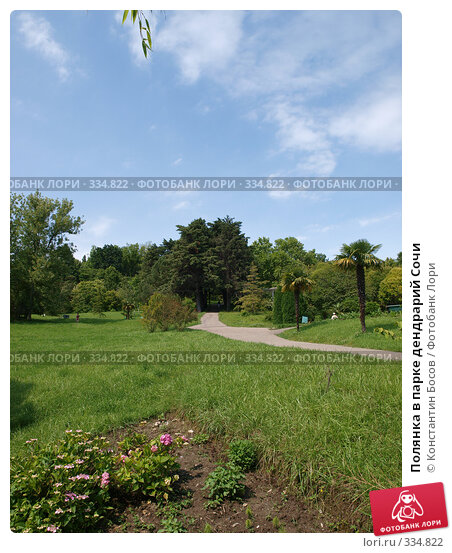 Купить «Полянка в парке дендрарий Сочи», фото № 334822, снято 21 апреля 2018 г. (c) Константин Босов / Фотобанк Лори