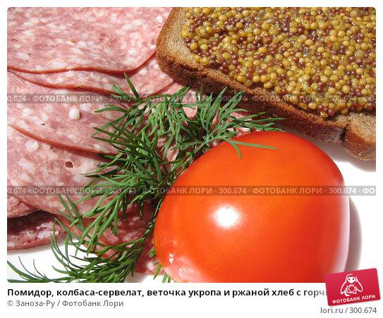 Купить «Помидор, колбаса-сервелат, веточка укропа и ржаной хлеб с горчицей», фото № 300674, снято 24 мая 2008 г. (c) Заноза-Ру / Фотобанк Лори