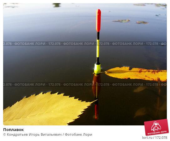 Поплавок, фото № 172078, снято 5 сентября 2006 г. (c) Кондратьев Игорь Витальевич / Фотобанк Лори