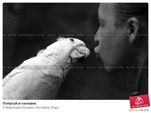 Купить «Попугай и человек», фото № 46418, снято 12 апреля 2006 г. (c) Морозова Татьяна / Фотобанк Лори