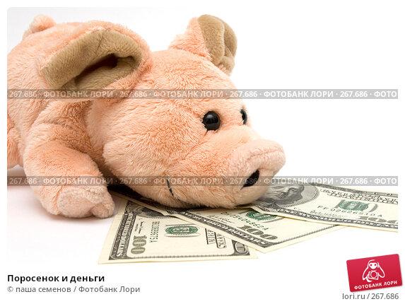 Поросенок и деньги, фото № 267686, снято 26 марта 2008 г. (c) паша семенов / Фотобанк Лори