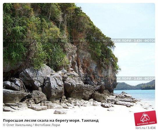Купить «Поросшая лесом скала на берегу моря. Таиланд», фото № 3434, снято 14 мая 2005 г. (c) Олег Хмельниц / Фотобанк Лори