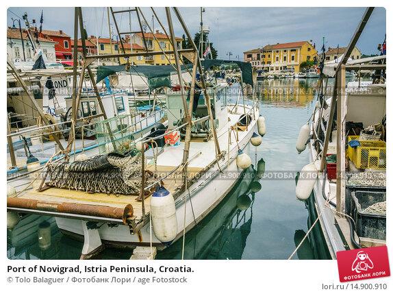 Купить «Port of Novigrad, Istria Peninsula, Croatia.», фото № 14900910, снято 21 июня 2018 г. (c) age Fotostock / Фотобанк Лори