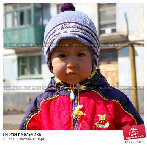 Портрет мальчика, фото № 247014, снято 3 апреля 2008 г. (c) RedTC / Фотобанк Лори