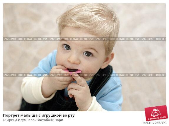 Портрет малыша с игрушкой во рту, фото № 246390, снято 15 марта 2008 г. (c) Ирина Игумнова / Фотобанк Лори