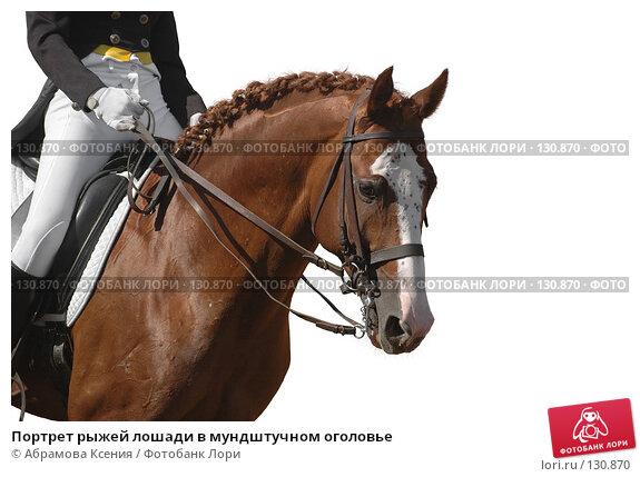Купить «Портрет рыжей лошади в мундштучном оголовье», фото № 130870, снято 12 декабря 2017 г. (c) Абрамова Ксения / Фотобанк Лори