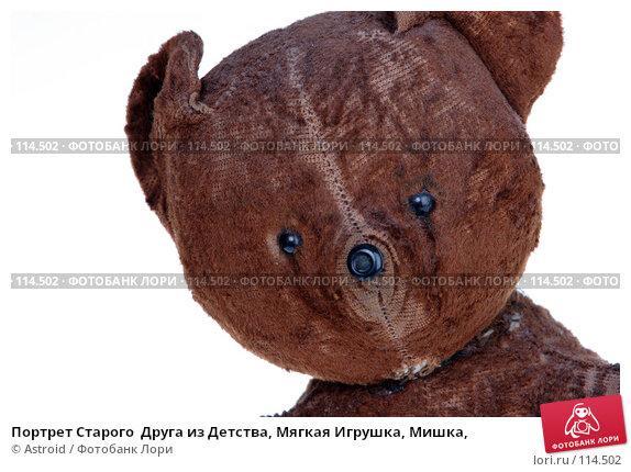 Портрет Старого  Друга из Детства, Мягкая Игрушка, Мишка,, фото № 114502, снято 8 ноября 2006 г. (c) Astroid / Фотобанк Лори