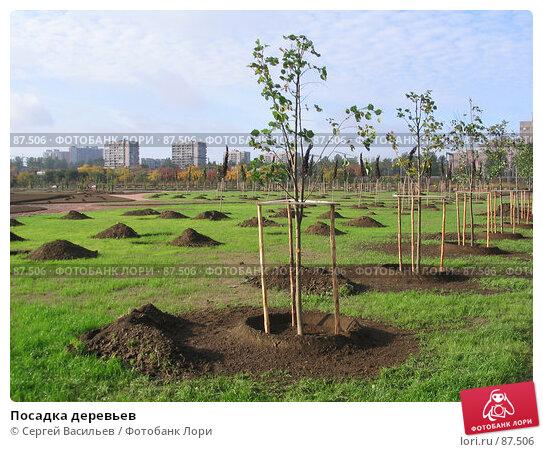 Посадка деревьев, фото № 87506, снято 23 сентября 2007 г. (c) Сергей Васильев / Фотобанк Лори