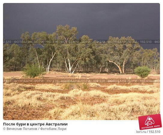 Купить «После бури в центре Австралии», фото № 192510, снято 15 октября 2006 г. (c) Вячеслав Потапов / Фотобанк Лори