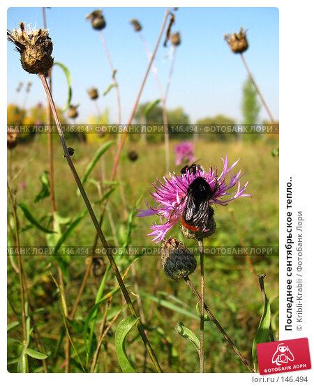 Последнее сентябрьское тепло.., фото № 146494, снято 27 сентября 2007 г. (c) Kribli-Krabli / Фотобанк Лори