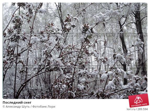 Купить «Последний снег», фото № 289594, снято 17 марта 2018 г. (c) Александр Шуть / Фотобанк Лори