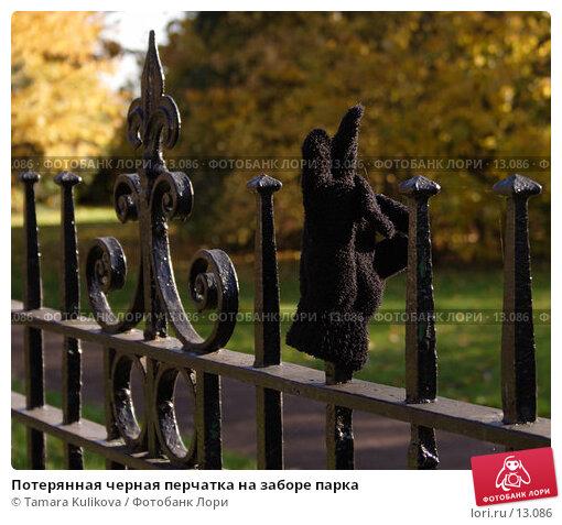Потерянная черная перчатка на заборе парка, фото № 13086, снято 19 ноября 2006 г. (c) Tamara Kulikova / Фотобанк Лори