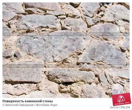 Поверхность каменной стены, фото № 318274, снято 19 мая 2006 г. (c) Анатолий Заводсков / Фотобанк Лори