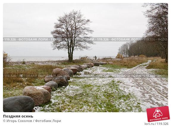 Купить «Поздняя осень», фото № 119326, снято 18 ноября 2007 г. (c) Игорь Соколов / Фотобанк Лори