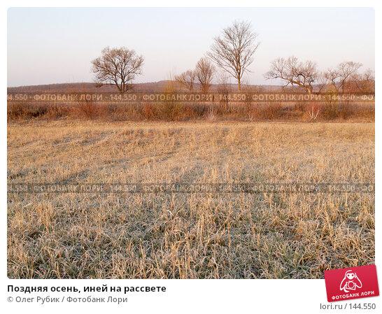 Купить «Поздняя осень, иней на рассвете», фото № 144550, снято 6 ноября 2007 г. (c) Олег Рубик / Фотобанк Лори