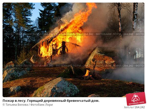 Пожар в лесу. Горящий деревянный бревенчатый дом., фото № 264242, снято 1 ноября 2007 г. (c) Татьяна Белова / Фотобанк Лори