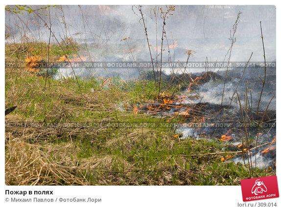 Пожар в полях, фото № 309014, снято 10 мая 2008 г. (c) Михаил Павлов / Фотобанк Лори