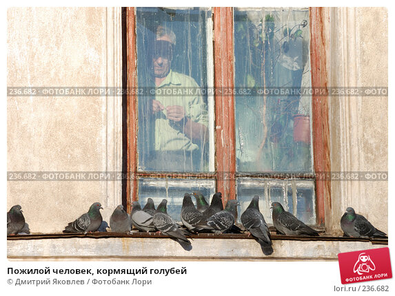 Пожилой человек, кормящий голубей, фото № 236682, снято 8 января 2008 г. (c) Дмитрий Яковлев / Фотобанк Лори