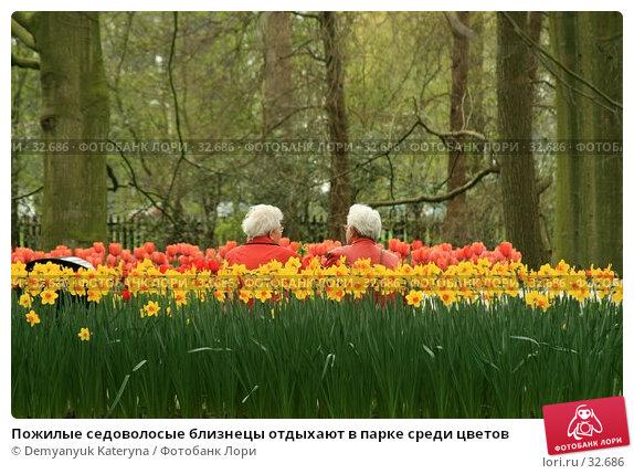 Пожилые седоволосые близнецы отдыхают в парке среди цветов, фото № 32686, снято 11 апреля 2007 г. (c) Demyanyuk Kateryna / Фотобанк Лори