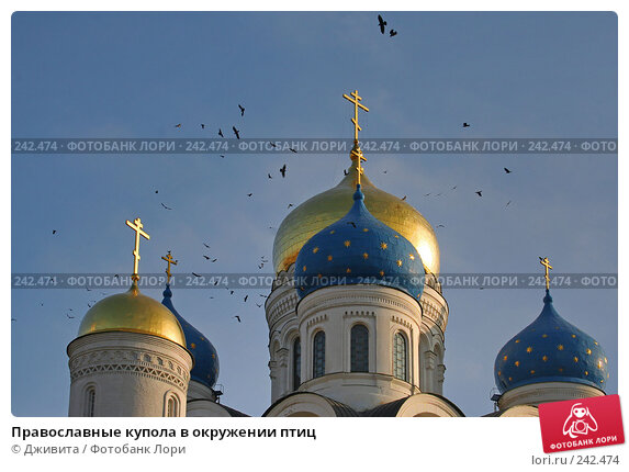 Православные купола в окружении птиц, фото № 242474, снято 29 октября 2007 г. (c) Дживита / Фотобанк Лори
