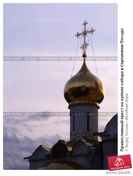 Православный крест на куполе собора в Сергиевом Посаде, фото № 232670, снято 1 марта 2008 г. (c) Sergey Toronto / Фотобанк Лори