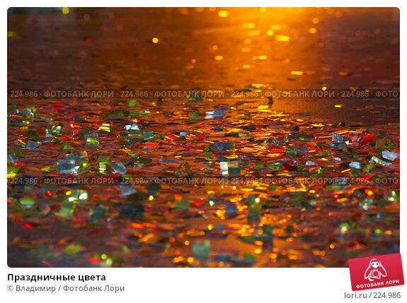 Купить «Праздничные цвета», фото № 224986, снято 14 февраля 2008 г. (c) Владимир / Фотобанк Лори