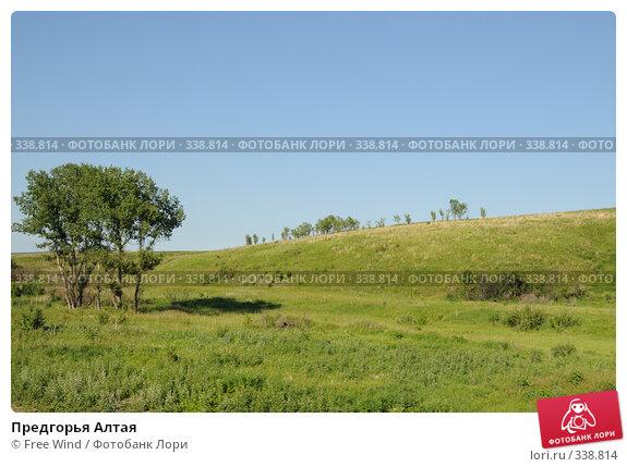 Предгорья Алтая, эксклюзивное фото № 338814, снято 27 июня 2008 г. (c) Free Wind / Фотобанк Лори