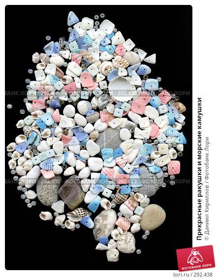 Прекрасные ракушки и морские камушки, фото № 292438, снято 7 декабря 2016 г. (c) Даниил Кириллов / Фотобанк Лори