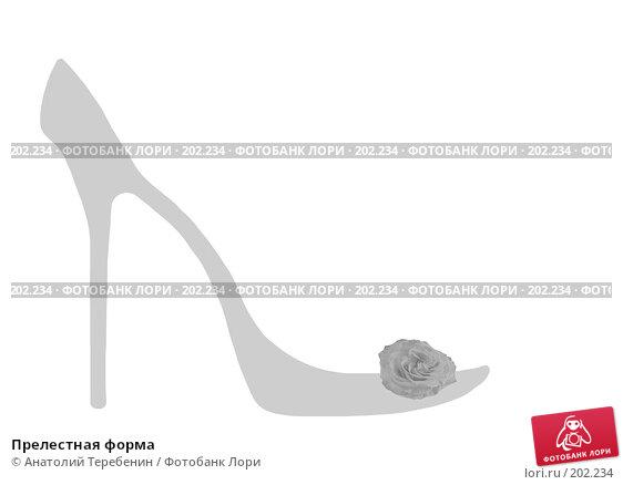 Купить «Прелестная форма», иллюстрация № 202234 (c) Анатолий Теребенин / Фотобанк Лори