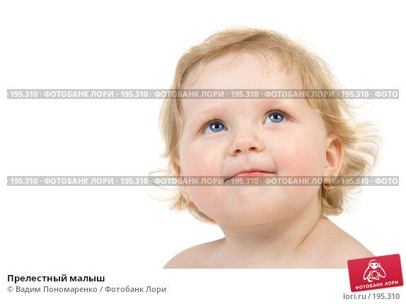 Прелестный малыш, фото № 195310, снято 19 января 2008 г. (c) Вадим Пономаренко / Фотобанк Лори