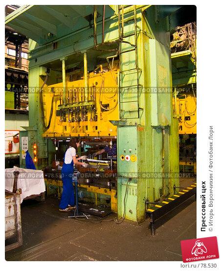 Купить «Прессовый цех», фото № 78530, снято 1 сентября 2007 г. (c) Игорь Ворончихин / Фотобанк Лори