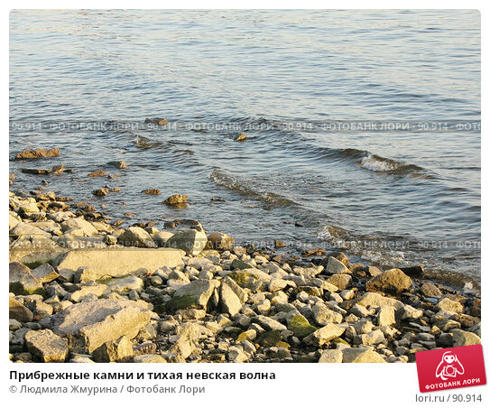 Прибрежные камни и тихая невская волна, фото № 90914, снято 23 января 2017 г. (c) Людмила Жмурина / Фотобанк Лори