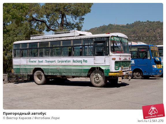Купить «Пригородный автобус», фото № 2561270, снято 10 мая 2011 г. (c) Виктор Карасев / Фотобанк Лори