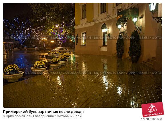 Купить «Приморский бульвар ночью после дождя», фото № 188634, снято 1 ноября 2007 г. (c) крижевская юлия валерьевна / Фотобанк Лори