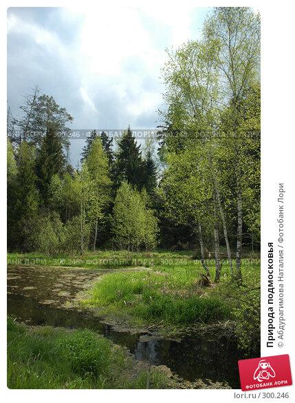 Природа подмосковья, фото № 300246, снято 11 мая 2008 г. (c) Абдурагимова Наталия / Фотобанк Лори