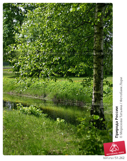 Природа России, фото № 51262, снято 25 мая 2006 г. (c) Морозова Татьяна / Фотобанк Лори