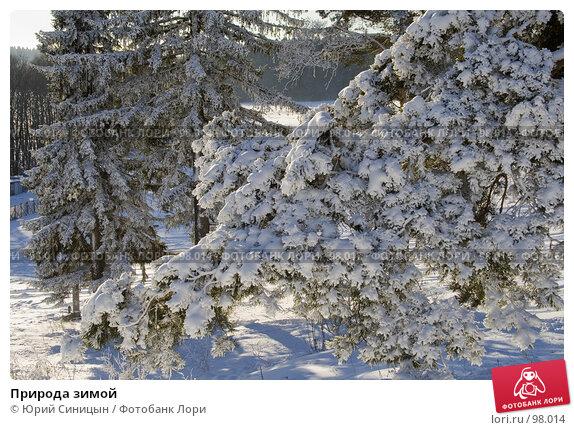 Природа зимой, фото № 98014, снято 12 февраля 2007 г. (c) Юрий Синицын / Фотобанк Лори