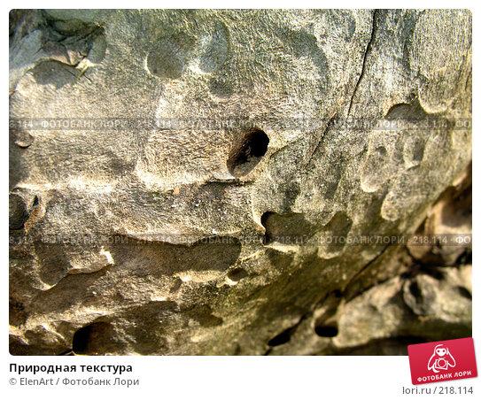 Природная текстура, фото № 218114, снято 23 июня 2017 г. (c) ElenArt / Фотобанк Лори