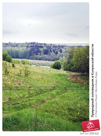 Природный заповедник в Калужской области, фото № 299522, снято 10 мая 2008 г. (c) Parmenov Pavel / Фотобанк Лори