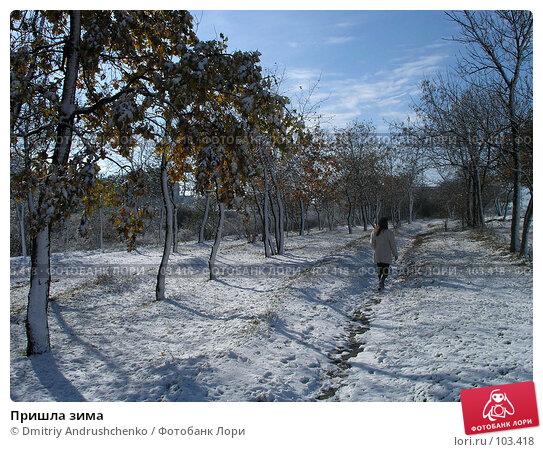 Пришла зима, фото № 103418, снято 24 июля 2017 г. (c) Dmitriy Andrushchenko / Фотобанк Лори