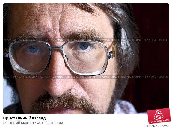 Пристальный взгляд, фото № 127954, снято 6 октября 2006 г. (c) Георгий Марков / Фотобанк Лори