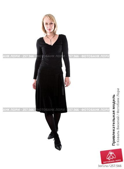 Купить «Привлекательная модель», фото № 257566, снято 9 октября 2007 г. (c) Коваль Василий / Фотобанк Лори