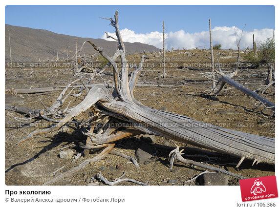 Про экологию, фото № 106366, снято 2 сентября 2007 г. (c) Валерий Александрович / Фотобанк Лори