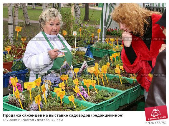 Продажа саженцев на выставке садоводов (редакционное), фото № 37782, снято 26 апреля 2007 г. (c) Vladimir Fedoroff / Фотобанк Лори