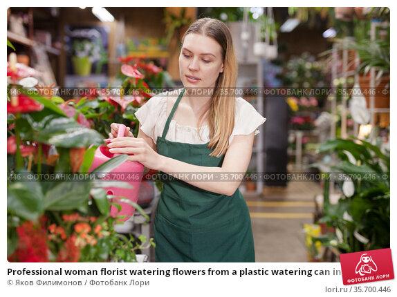 Professional woman florist watering flowers from a plastic watering can in floral shop. Стоковое фото, фотограф Яков Филимонов / Фотобанк Лори