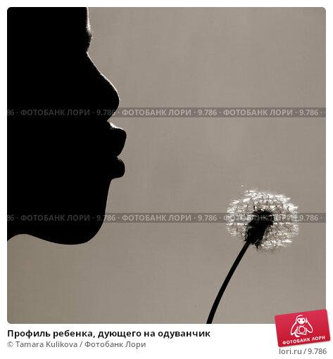 Профиль ребенка, дующего на одуванчик, фото № 9786, снято 10 сентября 2006 г. (c) Tamara Kulikova / Фотобанк Лори